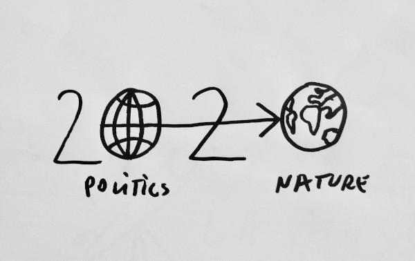 NATURE - Copy Dan Perjovschi