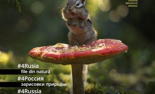 #4Rusia – file din natură