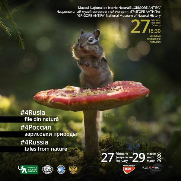 Imagini pentru #4Rusia – file din natură