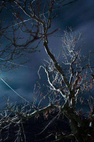 © Ioanna Sakellaraki, Greece, Student Shortlist, 2020 Sony World Photography Awards