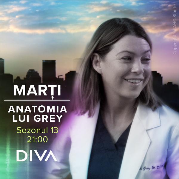 Diva Anatomia lui Grey s13