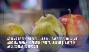 Schema UE pentru școli: 18.5 milioane de euro, sumă alocată României pentru fructe, legume și lapte în anul școlar 2020/2021