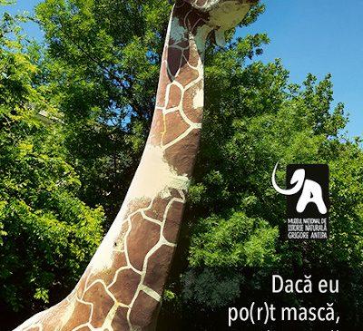 De 1 iunie, Muzeul Antipa își redeschide porțile
