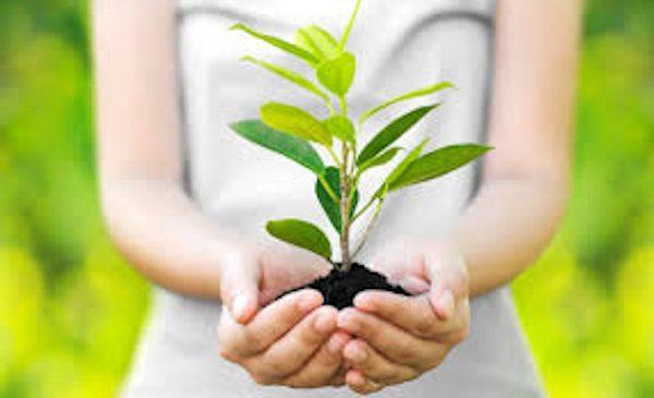 Brother susține viitorii specialiști în domeniul protecției mediului