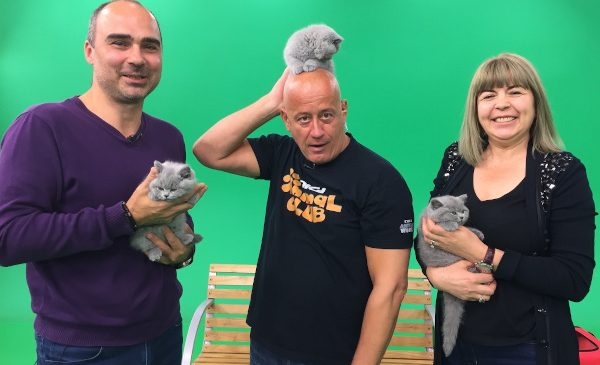 Digi Animal Club revine cu noi ediții din 6 iunie la Digi Animal World