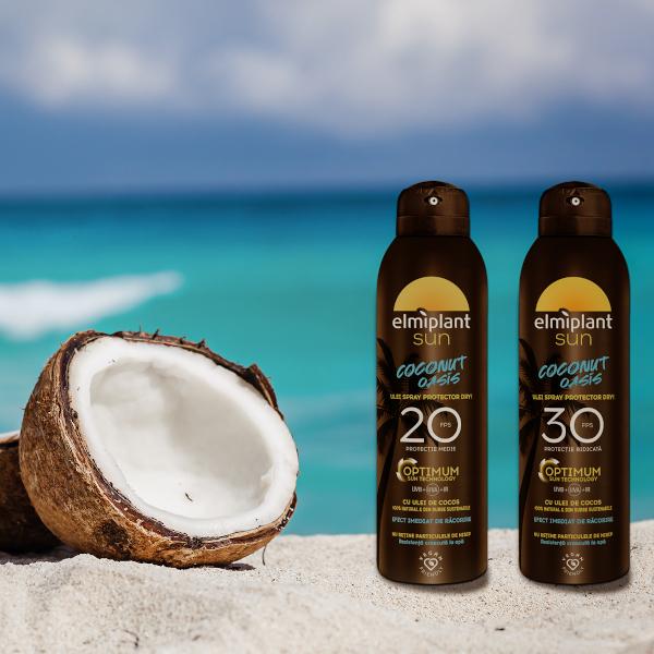 Coconut Oasis