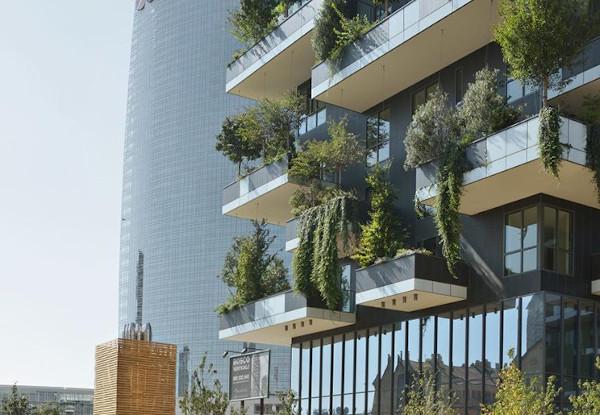 Saint-Gobain Romania Sustenabilitate