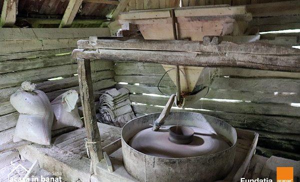 Salvăm Morile de Apă: 10 mori de apă vor fi reabilitate în acest an în Banatul de munte