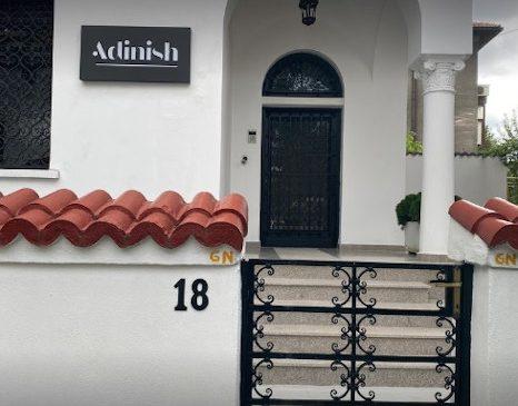 Adinish, primul magazin de puericultura scandinava din Romania isi deschide portile offline
