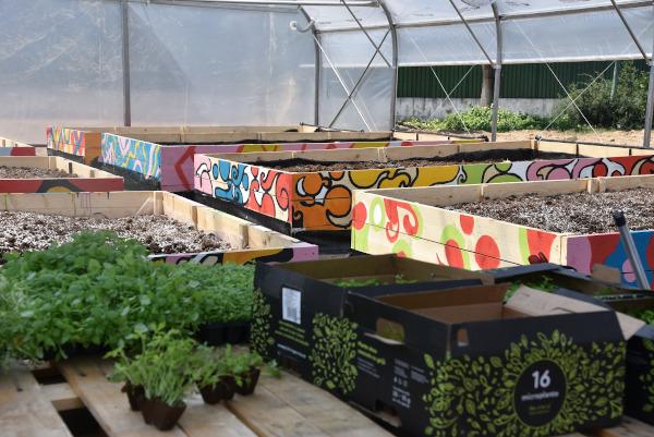 Asociația Zi de Bine_Grădina Terapeutică 1