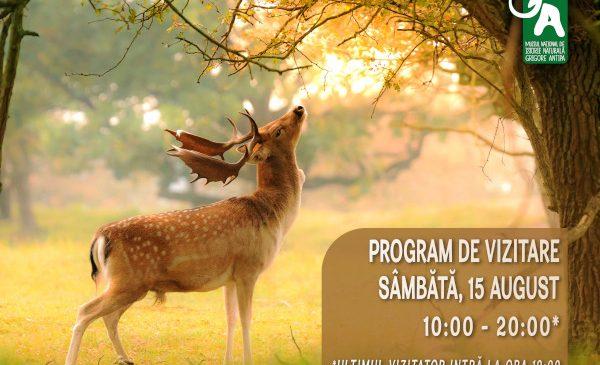 """Programul special de vizitare al Muzeului Național de Istorie Naturală """"Grigore Antipa"""" în data de 15 august 2020"""
