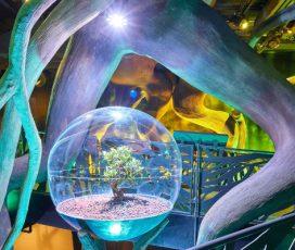 Pavilioane în Premieră ale DUBAI Expo 2020