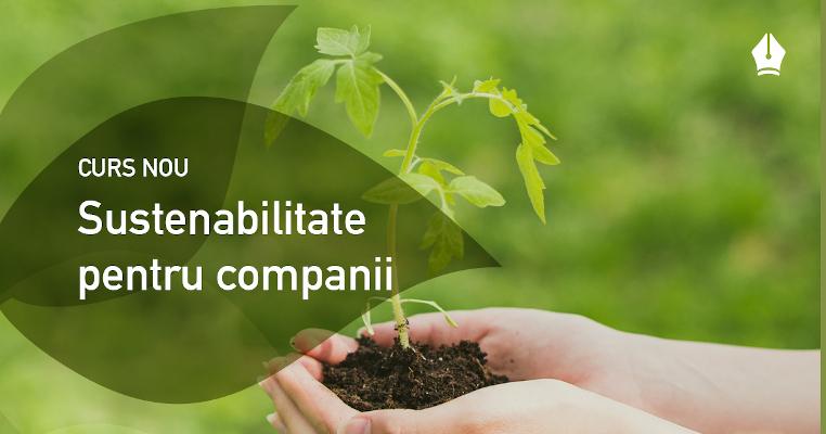 Cursuri Creative - curs Sustenabilitate pentru companii