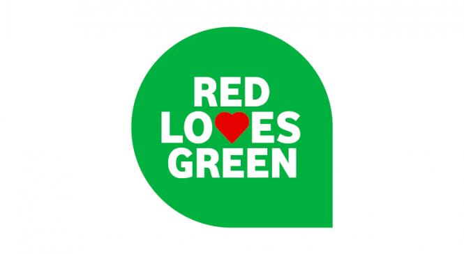Bilanț verde: mai puțin plastic, energie regenerabilă și grijă pentru păduri
