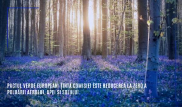 Pactul verde european: Ținta Comisiei este reducerea la zero a poluării aerului, apei și solului