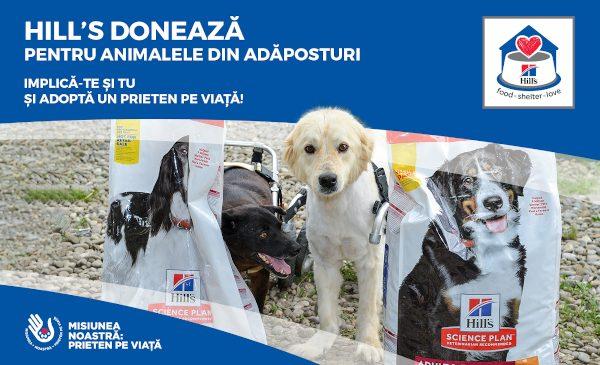 Hill's Pet Nutrition donează mii de kilograme de hrană pentru animalele din adăposturi în cadrul campaniei #MisiuneaNoastrăPrietenPeViață