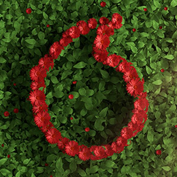 Vodafone_retea verde