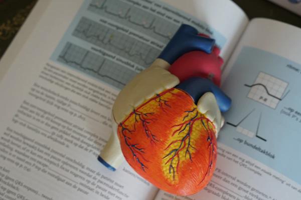 carti student la medicină