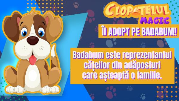 Îl adopt pe Badabum – o campanie ASPA, Big Hearts Society și Clopoțelul Magic