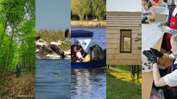 WWF aniversează 60 de ani de când construiește o lume pentru natură și pentru oameni