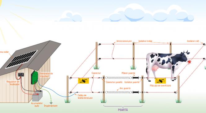 Garduri electrice – cum le integram in ferma sau gospodaria noastra?
