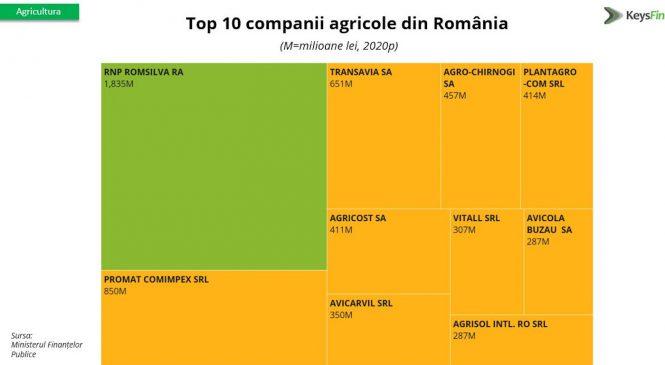 Studiu KeysFin: 2021, an de revenire pentru agricultura românească